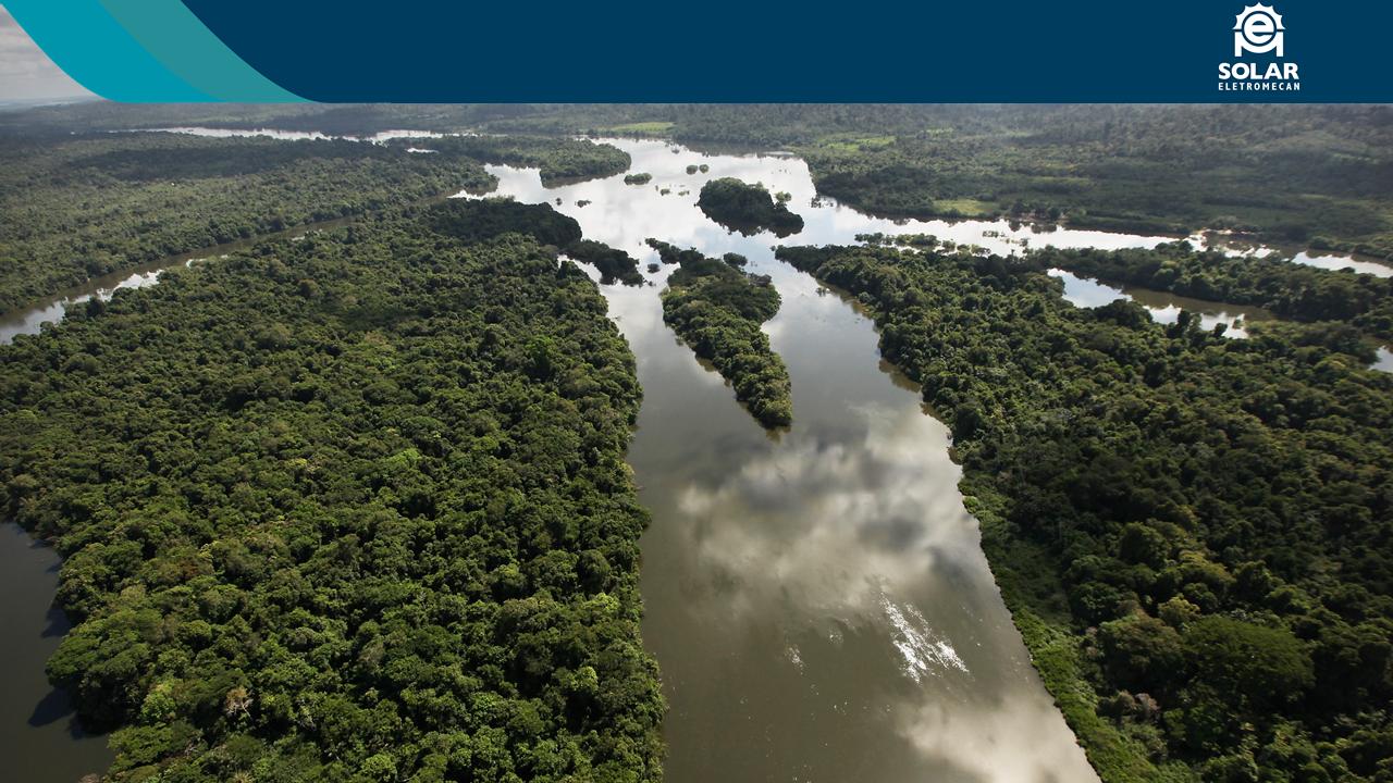 Imagem mostra região amazônica